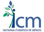 11 ICM